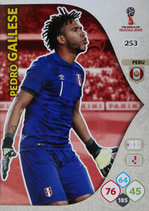 WORLD CUP RUSSIA 2018 TEAM MATE PERU GALLESE 253