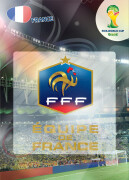 WORLD CUP BRASIL 2014 CLUB BADGE LOGO France #157