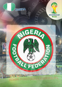 WORLD CUP BRASIL 2014 CLUB BADGE LOGO Nigeria #262