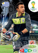 WORLD CUP BRASIL 2014 TEAM MATE Fernando Muslera #305