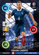 ROAD TO EURO 2016 TEAM MATE Yohan Cabaye #84