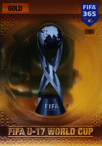 2017 FIFA 365 TROPHIES FIFA U-17 World Cup #13