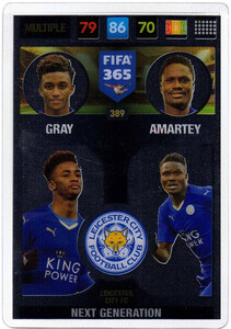 2017 FIFA 365 NEXT GENERATION Gray / Amartey #389