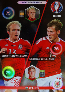 EURO 2016 NEXT GENERATION  Williams /  Williams #456