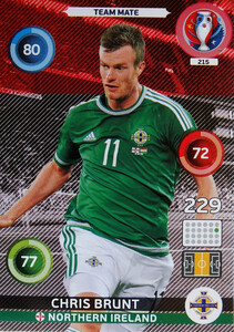 EURO 2016 TEAM MATE Chris Brunt #215