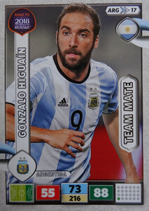 ROAD TO RUSSIA 2018 TEAM MATE ARGENTYNA HIGUAIN 17