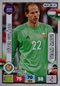 ROAD TO RUSSIA 2018 TEAM MATE WĘGRY  GULACSI 1